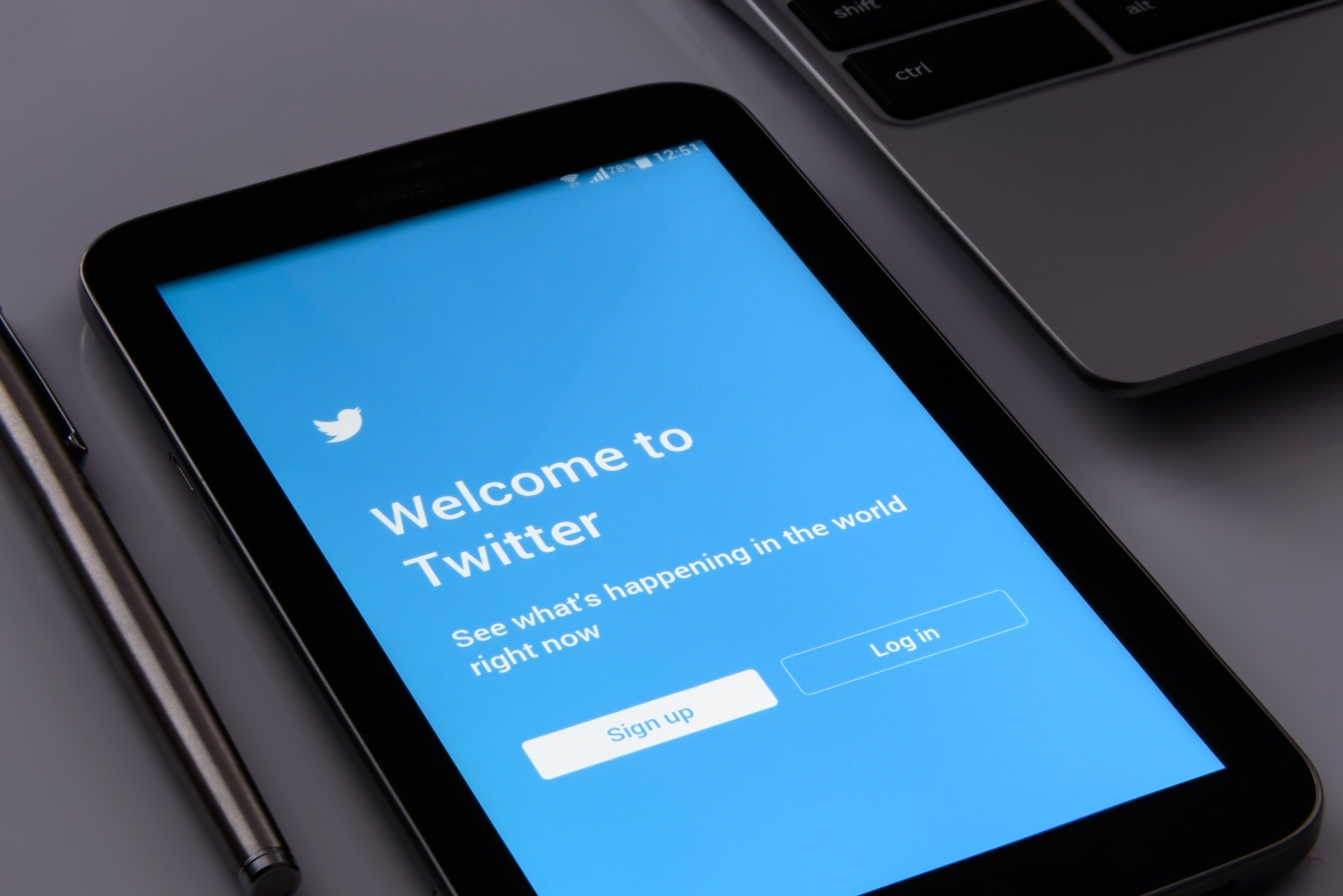 Like, Retweet, and Quote Tweet: Understanding the Twitterverse